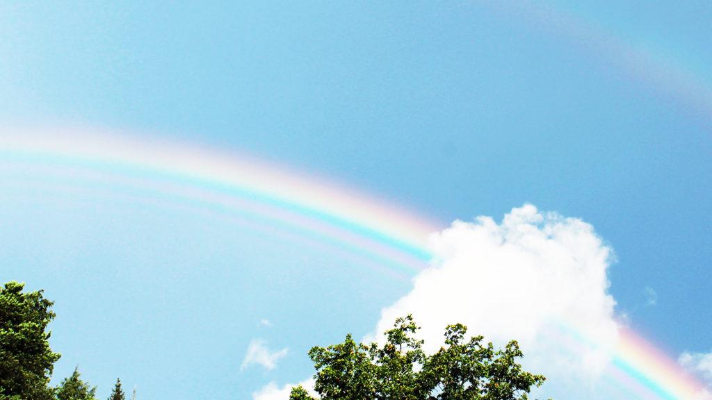 ココナラ 虹の画像